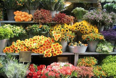 Бизнес-план салона цветов